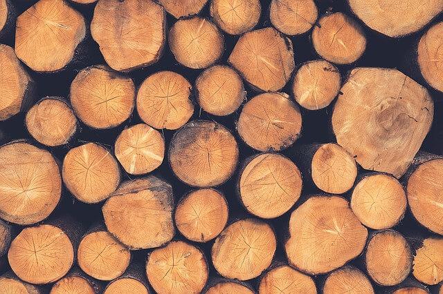 Holz Holzhäcksler Test